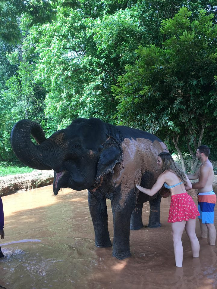 Elephant sanctuary Khao sok